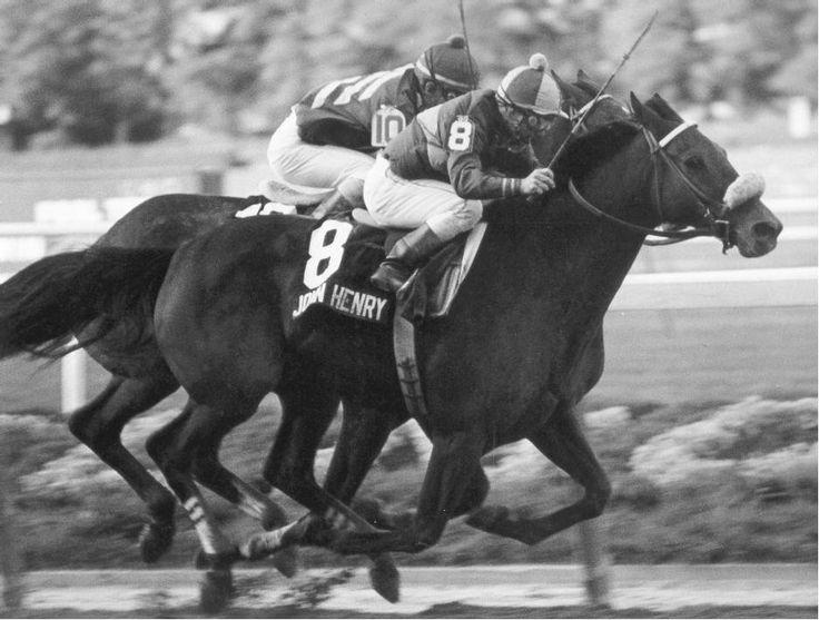 339199120720d51eeacb969d9168b3b5--race-horses-horse-racing