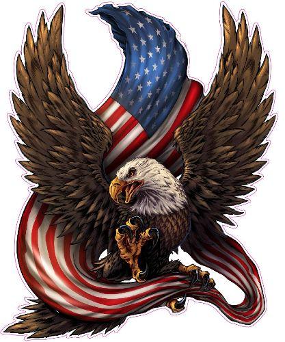 RESIZED American-Bald-Eagle-American-Flag